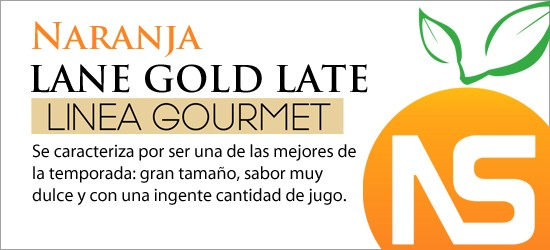 Lane Gold Late Gourmet